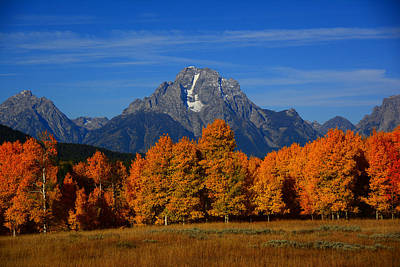 Photograph - Mount Moran And Aspens by Raymond Salani III