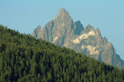Photograph - Mount Moran And Pine Trees - Grand Teton National Park by Ram Vasudev