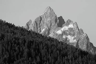 Photograph - Mount Moran And Pine Trees - Monochrome - Black And White by Ram Vasudev