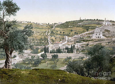 Photograph - Mount Of Olives, C1900 by Granger