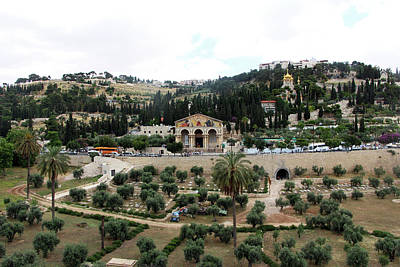 Photograph - Mount Of Olives Churches by Munir Alawi