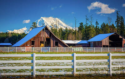 Photograph - Mount Rainier Barns by Inge Johnsson