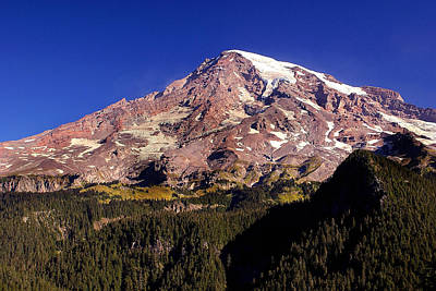 Photograph - Mount Rainier  by Marty Koch