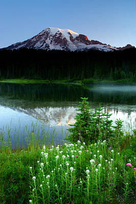 Photograph - Mount Rainier Reflections by Eric Foltz