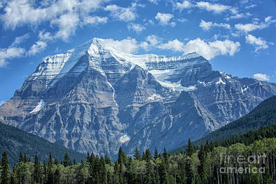 Photograph - Mount Robson by Patricia Hofmeester