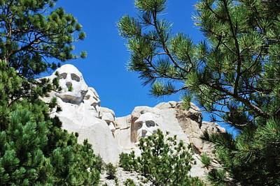Photograph - Mount Rushmore Green Tree Framing by Matt Harang