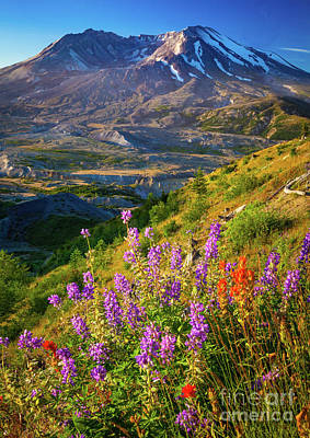 Volcanic Photograph - Mount Saint Helens Caldera by Inge Johnsson