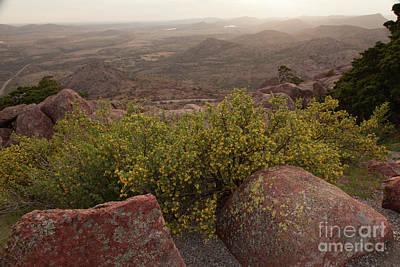 Photograph - Mount Scott Springtime by Iris Greenwell
