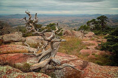 Photograph - Mount Scott View Iv by Ricky Barnard