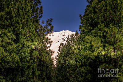 Photograph - Mount Shasta #2 by Blake Webster