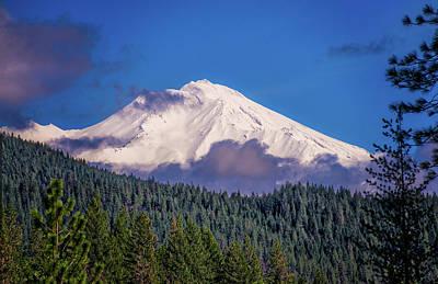 Photograph - Mount Shasta Blues by Lynn Bauer