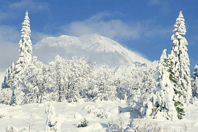 Photograph - Mount Shasta by Ellen and Richard Thane