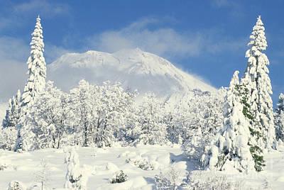Photograph - Mount Shasta by Ellen and Richard Thane