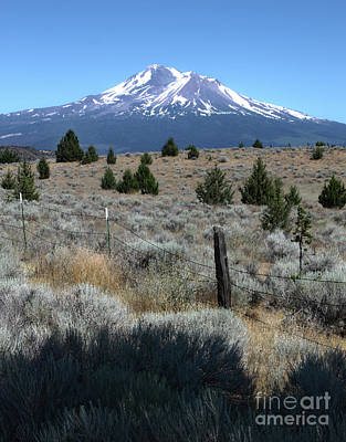 Photograph - Mount Shasta by Gregory Dyer