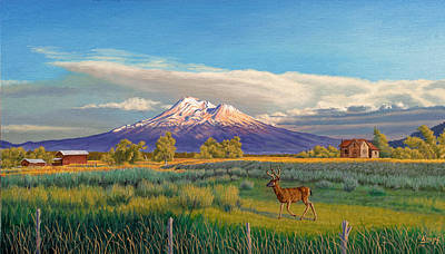 Snow Capped Painting - Mount Shasta by Paul Krapf