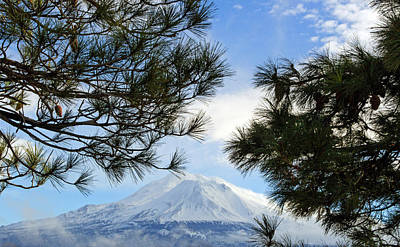 Photograph - Mount Shasta by Tikvah's Hope