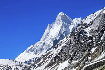 Photograph - Mount Shivaling - Indian Himalayas by Nila Newsom