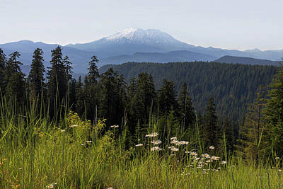 Photograph - Mount St Helens In Washington State by David Gn