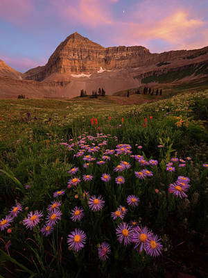 Photograph - Mount Timpanogos by Dustin LeFevre