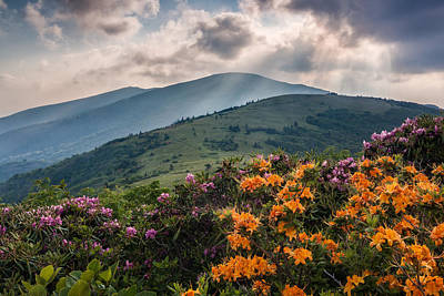 Mountain Aflame Art Print by Rob Travis