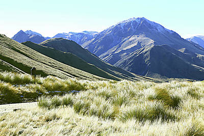Photograph - Mountain And Tussock by Nareeta Martin