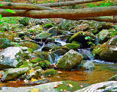 Photograph - Mountain Appalachian Stream 2 by The American Shutterbug Society