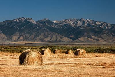 Photograph - Mountain Bales by Todd Klassy