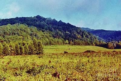 Photograph - Mountain Beauty by D Hackett