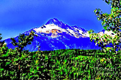Photograph - Mountain Beauty by Rick Bragan