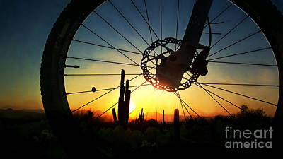 Photograph - Mountain Bike And Saguaro Sunrise  by Marianne Jensen
