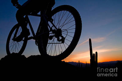 Photograph - Mountain Biker At Sunrise by Marianne Jensen
