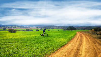Photograph - Mountain Biker Cycling Through Green Fields by Nika Lerman