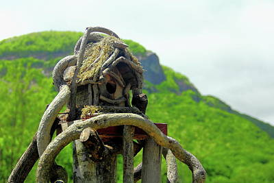 Photograph - Mountain Birdhouse by Allen Nice-Webb