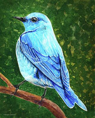 Painting - Mountain Bluebird by Douglas Castleman