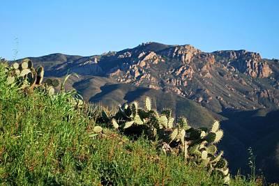 Mountain Cactus View - Santa Monica Mountains Art Print