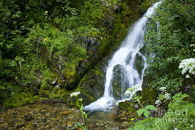 Photograph - Mountain Cascade by Idaho Scenic Images Linda Lantzy