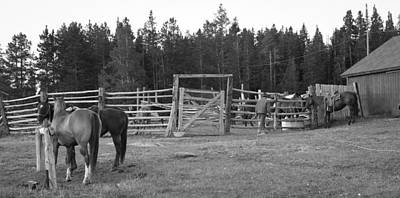 Photograph - Mountain Corrals by Diane Bohna