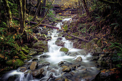 Photograph - Mountain Creek by Spencer McDonald