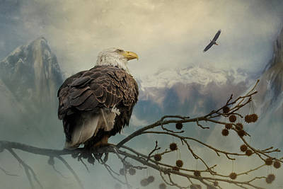 Photograph - Mountain Dreams Bald Eagle Art by Jai Johnson