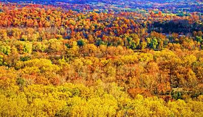 Photograph - Mountain Fall Colors by Alice Gipson