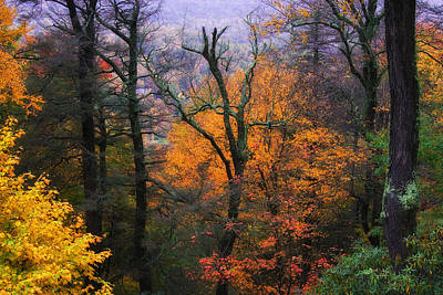 Photograph - Mountain Fall Colors by Ken Barrett