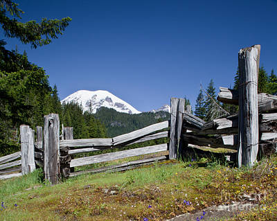 Photograph - Mountain Field With Split Rail Fence And Mount Rainier by DS Dodd