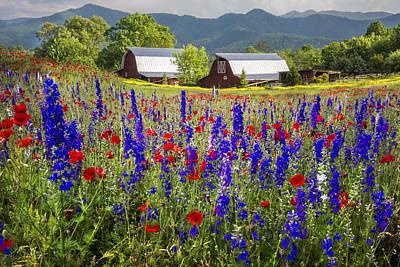 Mountain Flowers Art Print by Debra and Dave Vanderlaan