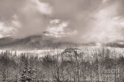 Photograph - Mountain Fog by Jean OKeeffe Macro Abundance Art