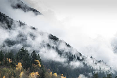 Mountain Fog Art Print by Jeffrey Dadson