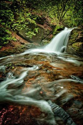Photograph - Mountain Fresh by Debra and Dave Vanderlaan