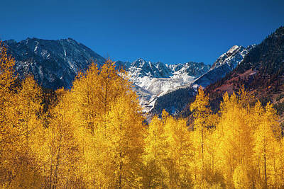 Photograph - Mountain Gold by Andrew Soundarajan