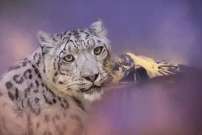 Photograph - Mountain Guardian Snow Leopard Art by Jai Johnson