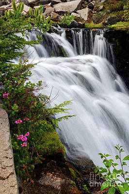 Photograph - Mountain Heather Falls by Mike Dawson
