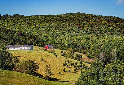 Photograph - Mountain Homes 1401t by Doug Berry